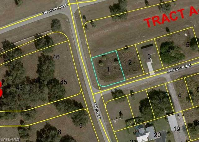 Lot#1 Block 16 Greenwood Avenue, Labelle, FL 33935 (#221073596) :: Caine Luxury Team