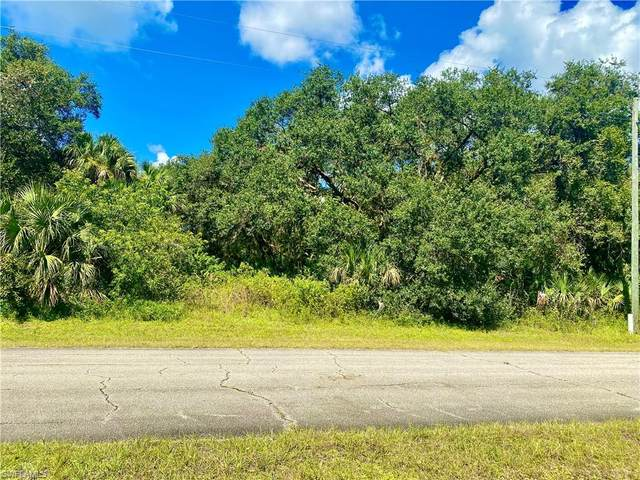 March Lane, Labelle, FL 33935 (MLS #221073951) :: RE/MAX Realty Team