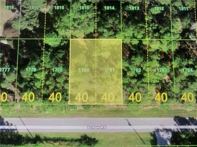 26450 Scham Road, Punta Gorda, FL 33955 (MLS #221074034) :: Medway Realty
