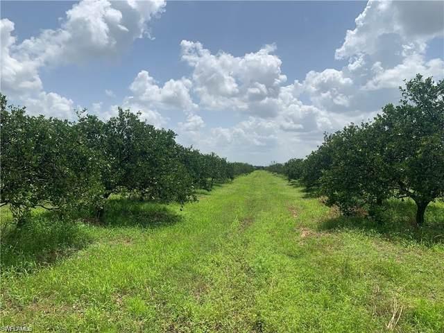 1st Road, Labelle, FL 33935 (MLS #221074188) :: The Premier Group
