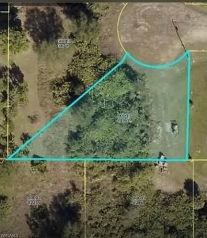 3509 9th Street W, Lehigh Acres, FL 33971 (MLS #221074431) :: Wentworth Realty Group