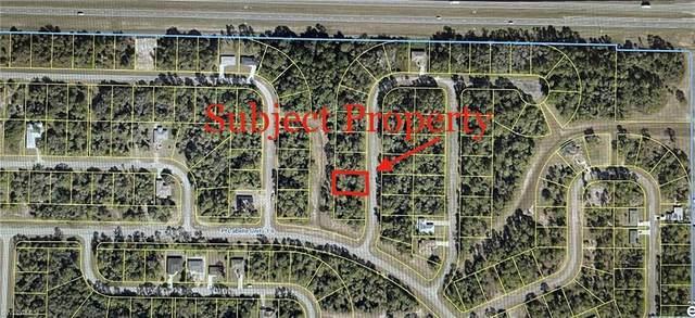 8003 Sandy Circle, Labelle, FL 33935 (#221074464) :: Jason Schiering, PA