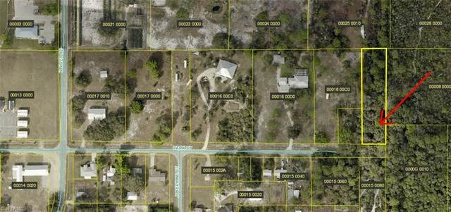 21731 Park Street, Alva, FL 33920 (MLS #221074835) :: Florida Homestar Team