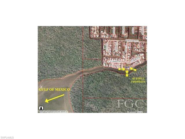 51 E Flamingo Dr, Everglades City, FL 34139 (MLS #214056636) :: The New Home Spot, Inc.