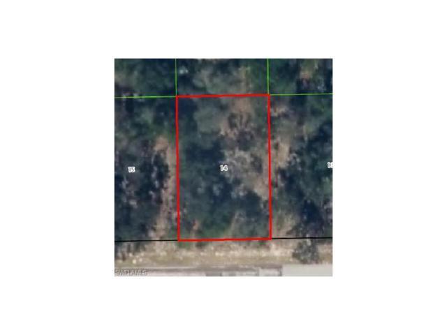 2415 W Rutland Dr, Citrus Springs, FL 34434 (MLS #215051450) :: The New Home Spot, Inc.