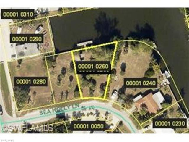 3542 Sea Holly Ln, St. James City, FL 33956 (MLS #216020288) :: The New Home Spot, Inc.