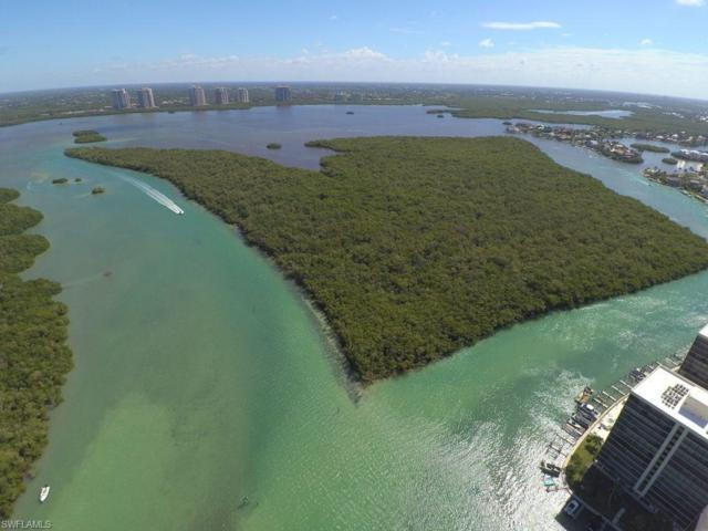 Battista Island, Bonita Springs, FL 34134 (MLS #216030027) :: RE/MAX Realty Team