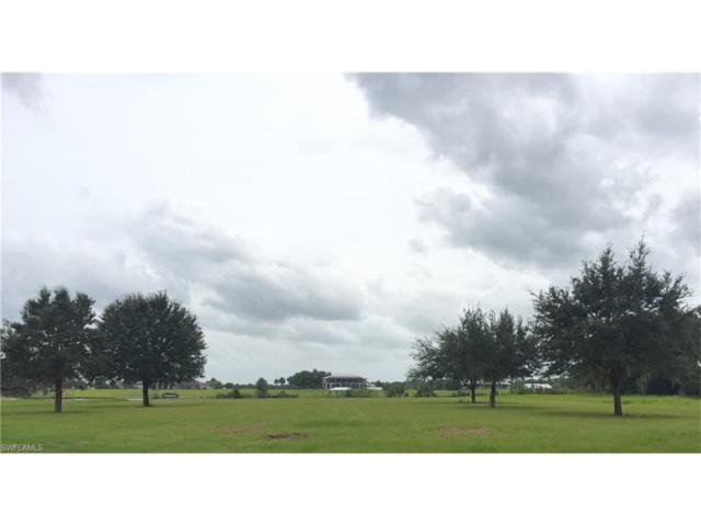 5745 Hidden Hammock Dr, Labelle, FL 33935 (MLS #216055357) :: The New Home Spot, Inc.