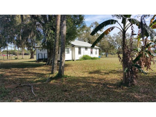 493 S Willis Ranch Rd, Felda, FL 33930 (#216080799) :: Homes and Land Brokers, Inc