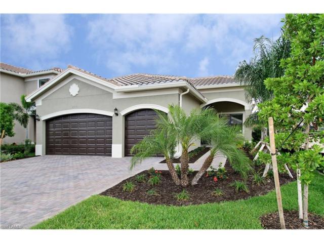 11541 Stonecreek Cir, Fort Myers, FL 33913 (MLS #217001655) :: The New Home Spot, Inc.