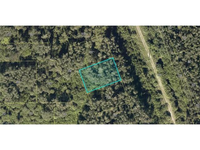 22311 Carmela Rocco Ave, Estero, FL 33928 (MLS #217007021) :: The New Home Spot, Inc.