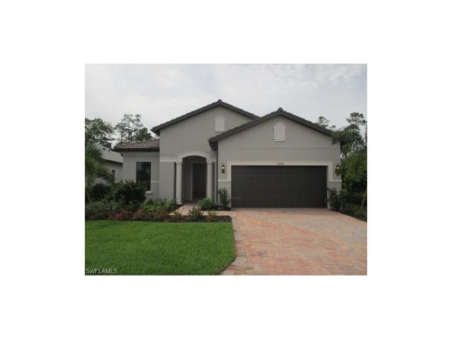 20568 Wilderness Ct, Estero, FL 33928 (MLS #217019511) :: The New Home Spot, Inc.