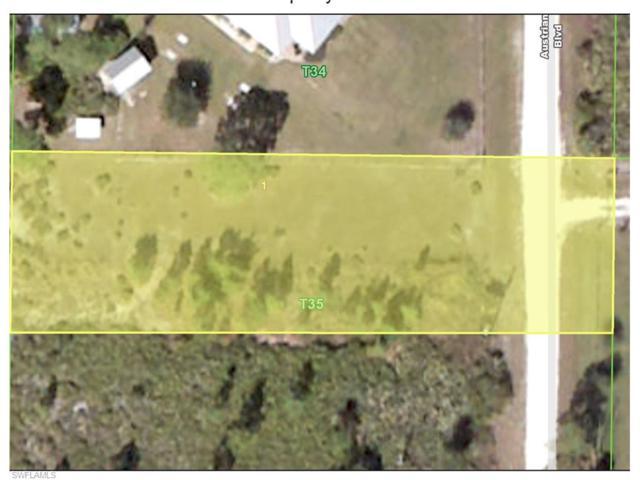8039 Austrian Blvd, Punta Gorda, FL 33982 (MLS #217030137) :: The New Home Spot, Inc.