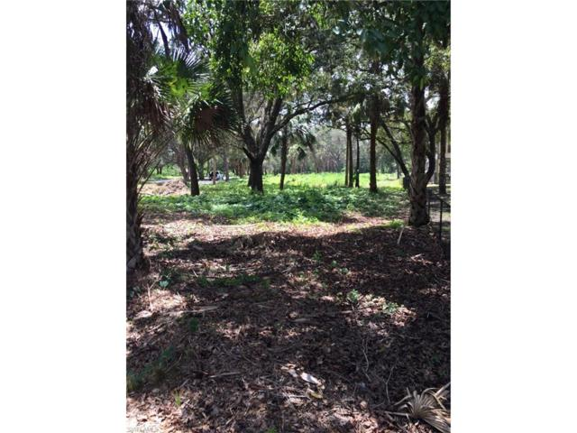 4421 Long Lake Dr, Fort Myers, FL 33905 (MLS #217041707) :: The New Home Spot, Inc.
