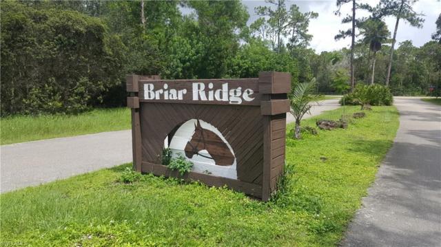 15306 Briar Ridge Cir, Fort Myers, FL 33912 (MLS #217048886) :: Sand Dollar Group