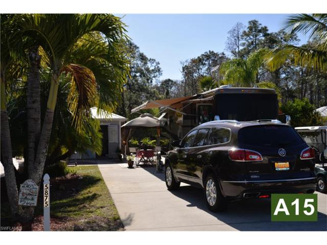 5875 Brightwood Dr, Fort Myers, FL 33905 (MLS #217048921) :: The New Home Spot, Inc.