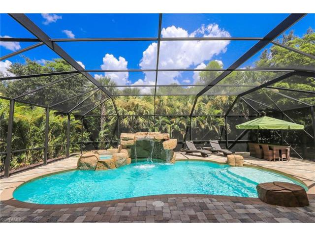 19872 Maddelena Cir, Estero, FL 33967 (MLS #217053500) :: The New Home Spot, Inc.