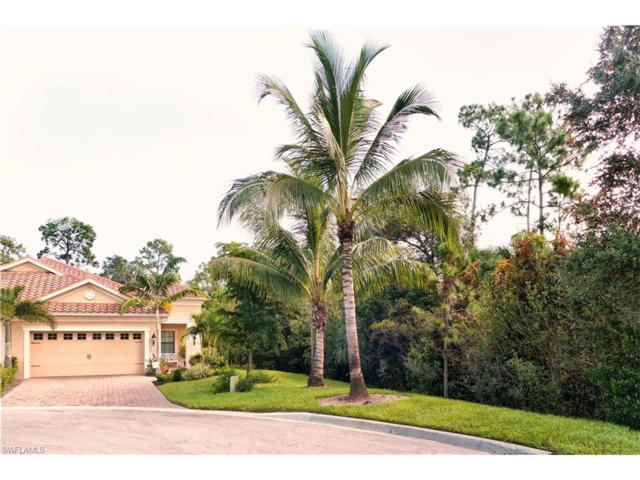 10094 Montevina Dr, Estero, FL 33928 (MLS #217055217) :: The New Home Spot, Inc.