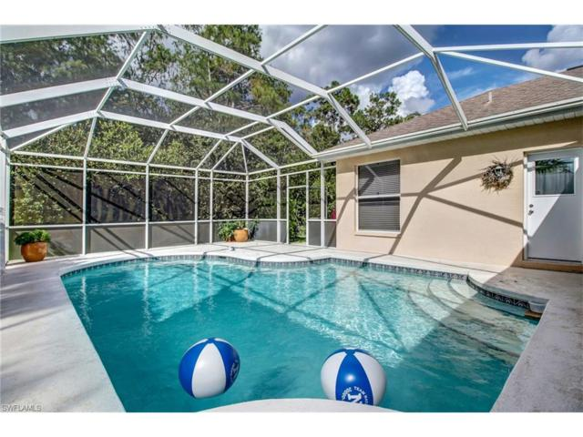 23008 Marsh Landing Blvd, Estero, FL 33928 (MLS #217056262) :: The New Home Spot, Inc.
