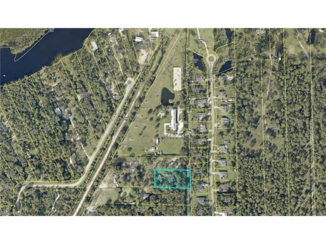 10971 Irish Ln, Fort Myers, FL 33905 (MLS #217059295) :: The New Home Spot, Inc.