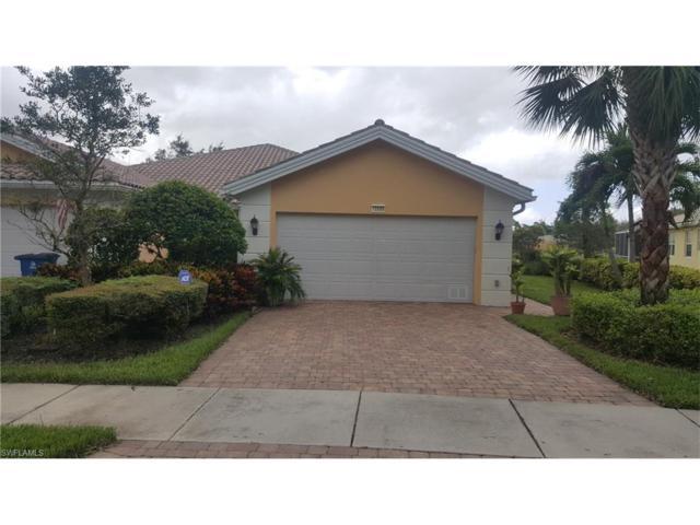 15509 Fan Tail Cir, Bonita Springs, FL 34135 (MLS #217060919) :: The New Home Spot, Inc.