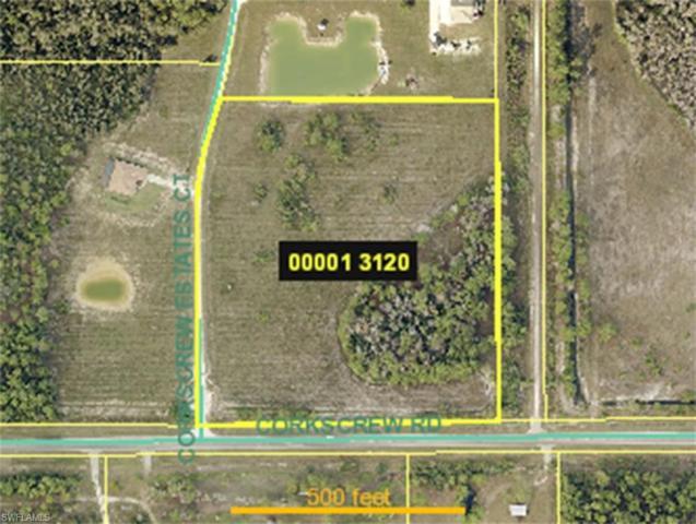 Corner Lot, Estero, FL 33928 (MLS #217064133) :: Clausen Properties, Inc.