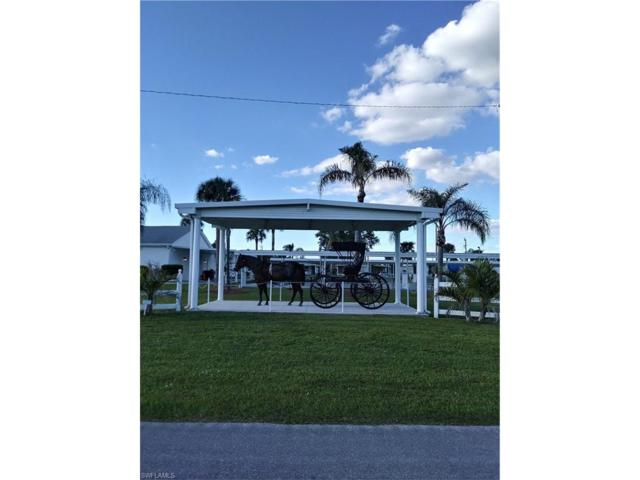 169 Overland Trl, North Fort Myers, FL 33917 (MLS #217071230) :: RE/MAX DREAM