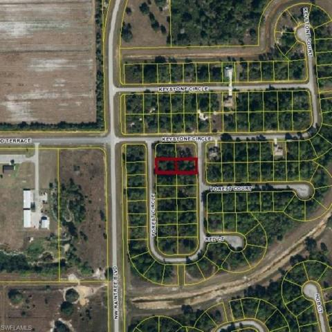 6537 Forest Cir, Labelle, FL 33935 (MLS #218034894) :: RE/MAX Realty Group