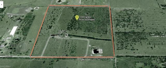 1195 Carson Dr, Labelle, FL 33935 (MLS #218038125) :: Clausen Properties, Inc.