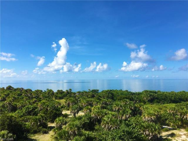 4501 Panama Shell Dr, Other, FL 33924 (MLS #218057169) :: Clausen Properties, Inc.