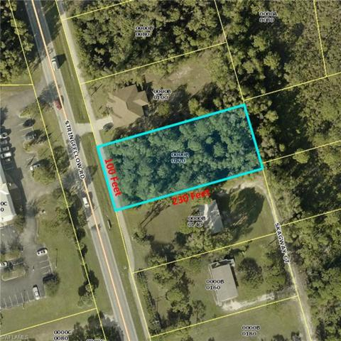 8861 Skagway Ct, St. James City, FL 33956 (MLS #218067085) :: RE/MAX Realty Group
