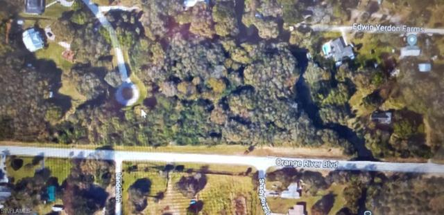 4741 Lone Pine Ct, Fort Myers, FL 33905 (MLS #219000179) :: Sand Dollar Group