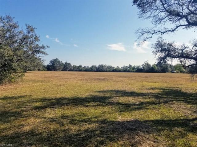 1233 N Charolais Rd, Labelle, FL 33935 (MLS #219009669) :: RE/MAX Realty Group