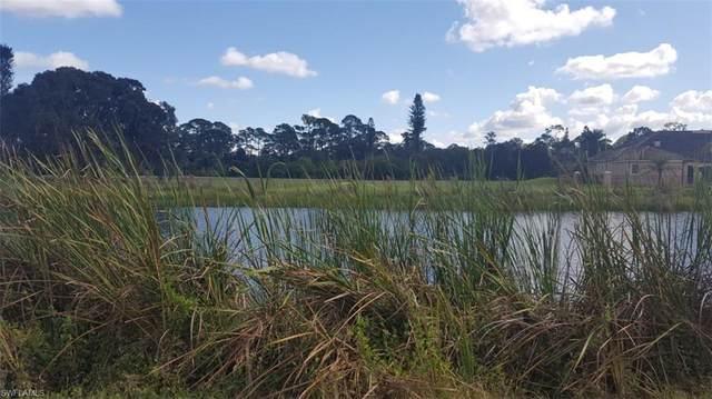 17140 Serengeti Circle, Alva, FL 33920 (#219073697) :: Caine Premier Properties