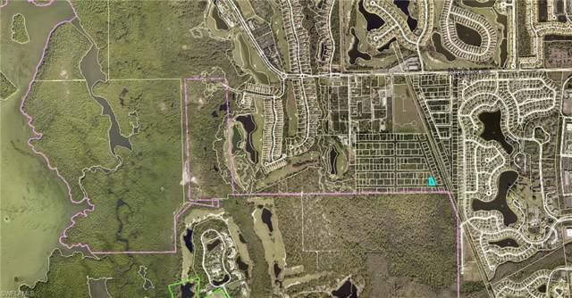 St Augustine Street, Estero, FL 33928 (MLS #220003226) :: Clausen Properties, Inc.