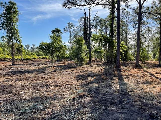 1288 Cypress Avenue, Labelle, FL 33935 (MLS #220039181) :: Wentworth Realty Group