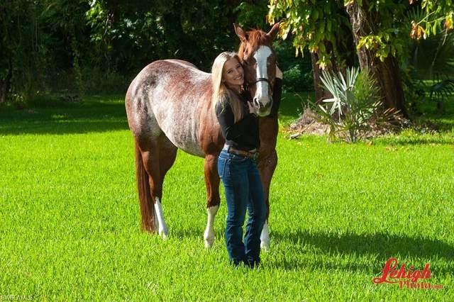 Joel Blvd And Tuckahoe Road, Alva, FL 33920 (#220054255) :: Southwest Florida R.E. Group Inc