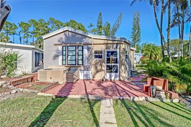10726 Everglades Kite Circle, Estero, FL 33928 (MLS #220078909) :: Realty Group Of Southwest Florida
