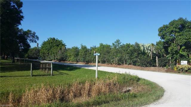 12300 Caisson Lane, Fort Myers, FL 33912 (MLS #221009583) :: Florida Homestar Team