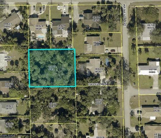 10880 Drusilla Lane, Bonita Springs, FL 34135 (MLS #221016079) :: Premiere Plus Realty Co.