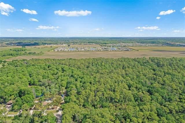 4211 Goebel Drive, Fort Myers, FL 33905 (MLS #221025282) :: Realty World J. Pavich Real Estate