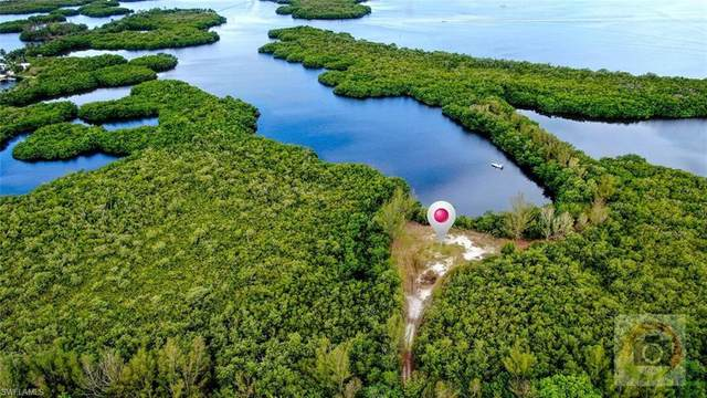 16269 Estuary Court, Bokeelia, FL 33922 (MLS #221033325) :: Realty World J. Pavich Real Estate