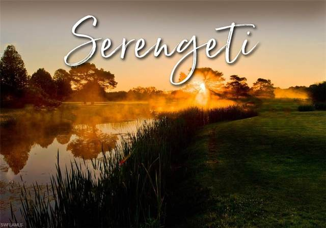 17140 Serengeti Circle, Alva, FL 33920 (#221046547) :: Jason Schiering, PA