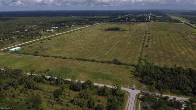 8251 Wheeler Road, Labelle, FL 33935 (MLS #221066797) :: Avantgarde