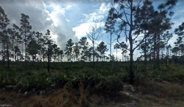 27430 Las Lomas Drive, Punta Gorda, FL 33955 (MLS #221073979) :: Medway Realty