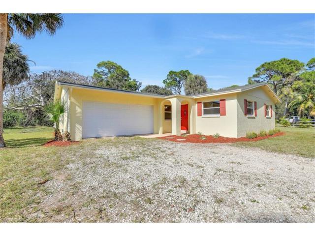 3582 Papaya St, St. James City, FL 33956 (MLS #216067617) :: The New Home Spot, Inc.