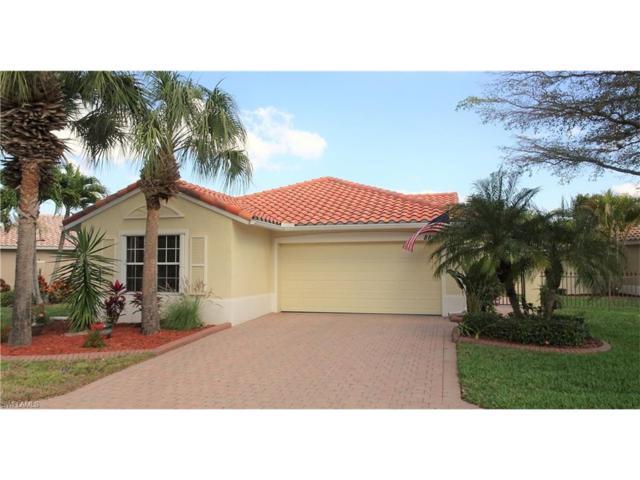 8897 Cascades Isle Blvd, Estero, FL 33928 (MLS #217014434) :: The New Home Spot, Inc.