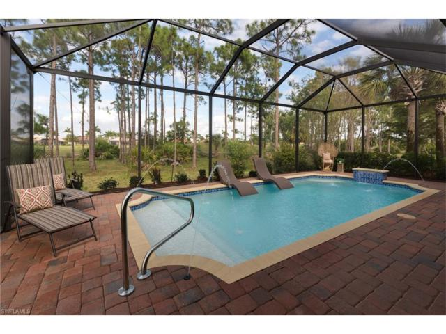 3365 Magnolia Landing Ln, North Fort Myers, FL 33917 (MLS #217062232) :: The New Home Spot, Inc.