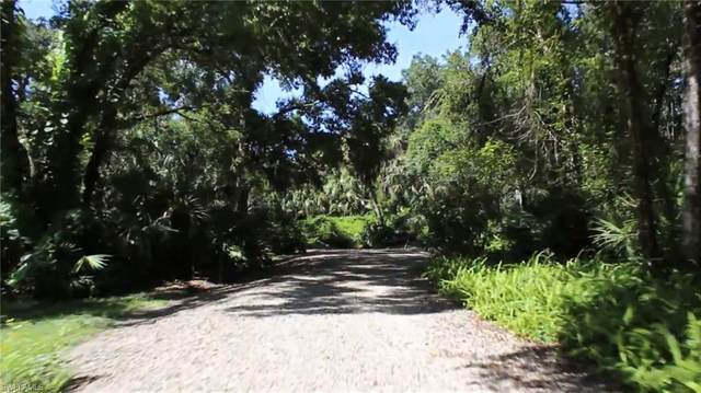 22141 Luckey Lee Lane, Alva, FL 33920 (MLS #221014026) :: BonitaFLProperties