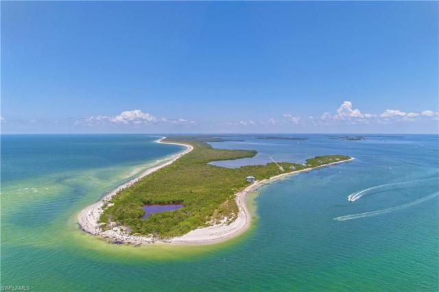 11000 Pejuan Shores On Cayo Costa, Cayo Costa, FL 33924 (MLS #218041040) :: RE/MAX Realty Group